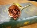 敲金工_小王子的玫瑰